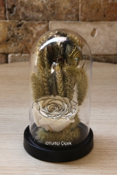 Kırmızı Gül : 7 Adet, Lilyum Çiçeği : 5 Adet  Aşkınızı en güzel şekilde ifade edecek Gül ve Lilyum Aranjmanı ile aşkınızı en muhteşem şekilde göstereceksiniz.  Yaklaşık Ürün Boyutu : 30 cm