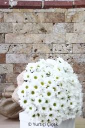 Seramikte 10 beyaz gülden hazırlanan aranjman ile sevginizin saflığını gösterme fırsatı şimdi bir tık uzağınızda. Yaklaşık Ürün Boyutu : 25 cm