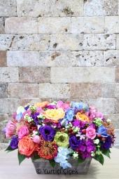 Özel kutu içerisinde rengarenk bahar çiçeklerinin uyumu ile sevdiklerinizi mutlu etmek istemez misiniz?