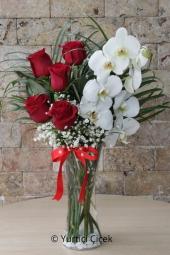 Canlı Beyaz Orkide ve Beyaz Güllerin Harika Tasarımı ile Sevdiklerinize Unutulmaz Bir Sürpriz Yapabilirsiniz.