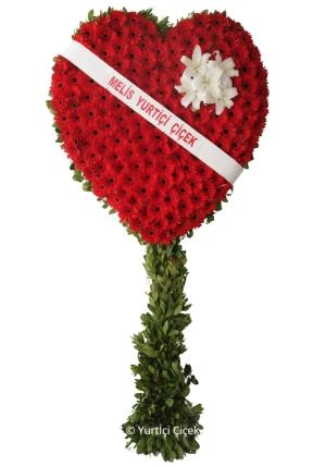 Kalp Pano Çiçeği
