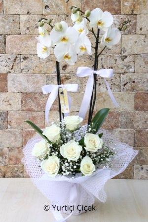 Aşkımızın Çiçeği