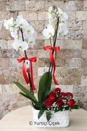 Seramikte beyaz orkide ve güller ile hazırlanan aranjman ile sevdiğiniz için aşk dolu bir sürpriz yapabilirsiniz. Yaklaşık Ürün Boyutu : 60 cm