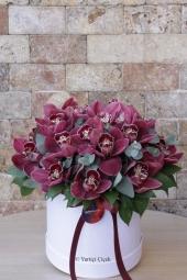 Özel taş seramikte midi orkide, sevdiklerinizin yaşam alanlarını renklendirecek. Yaklaşık Ürün Boyutu: 45 cm