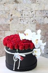 Viresia Saksı Çiçeği   Kırmızı çiçeğiyle dikkat çeken ve her ortamda bakabileceğiniz viresia ile sevdiklerinizi çok mutlu edeceksiniz.